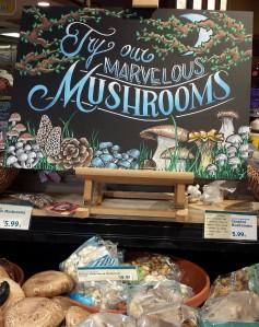 Mushroom Signage (2)